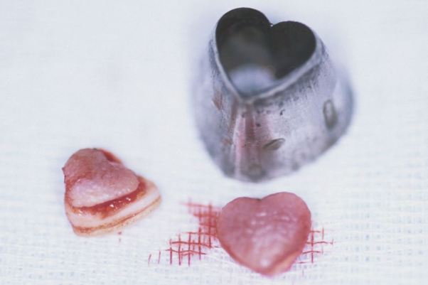 Hearts cut out of skin body modification Japan 1