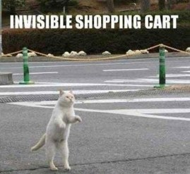Invisible_cat_shopping_cart