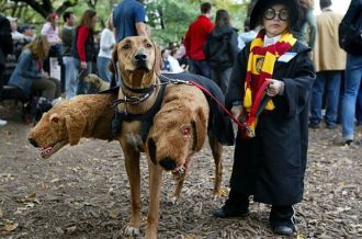 Crazy-Halloween-costumes harry potter 3-headed dog