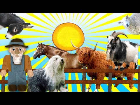 Farm Animal Sounds for Children, Animal Sounds Videos, Real Animal Sounds Videos, Farm Animals Sound