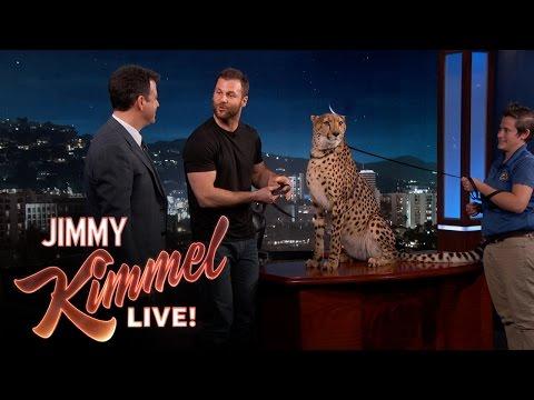 Wild Animals with Dave Salmoni