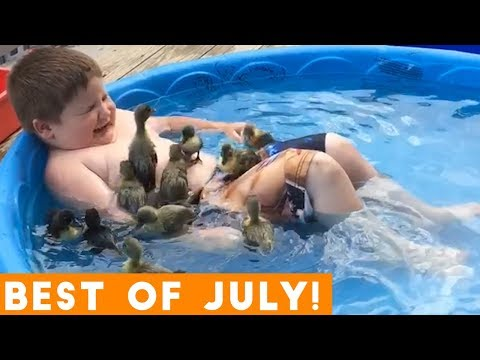 Ultimate Animal Reactions & Bloopers of July  2018 | Funny Pet Videos