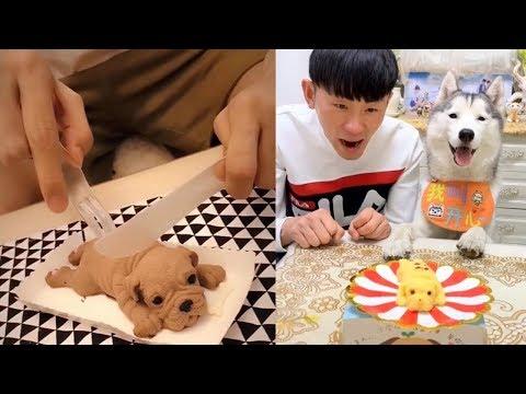 Dog Reaction to Dog Cake – Funny Dog Cake Reaction Compilation