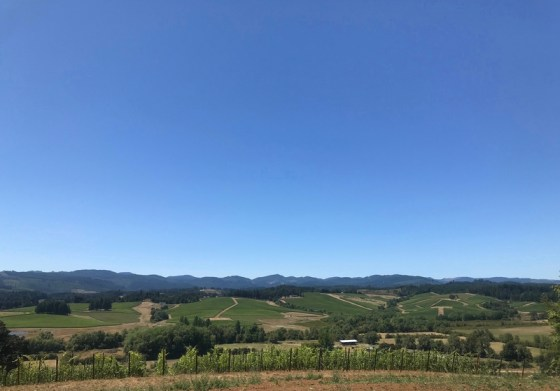 Résonance Vineyard tasting room view of Oregon Coast Range. Image: LM Archer.