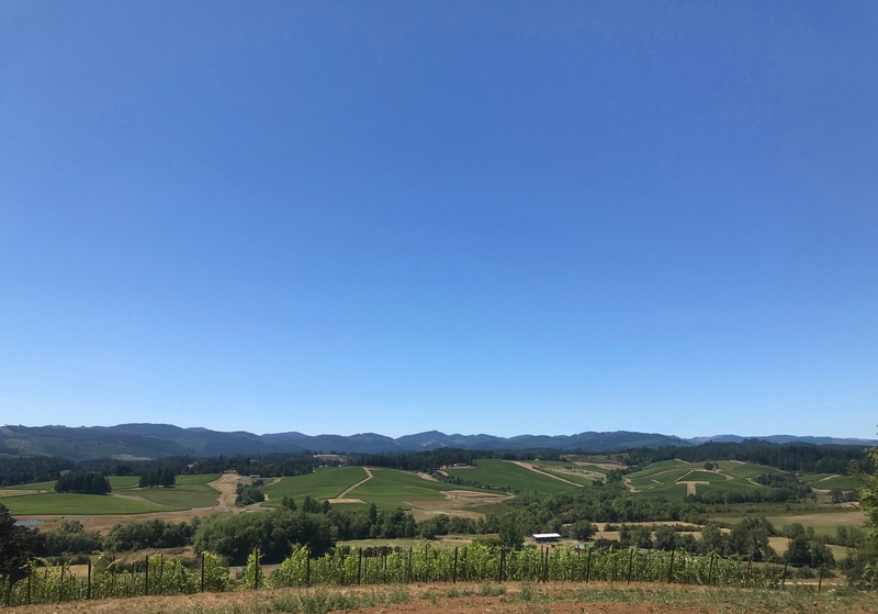 Résonance Vineyard tasting room view of Oregon Coast Range. Image: LM Archer.