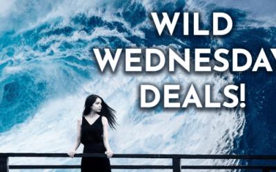 Wild Wednesday February 19, 2020