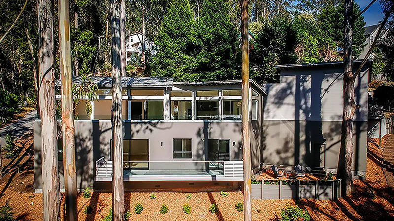 Coastal Forest · Contemporary · New Construction LMD Architecture