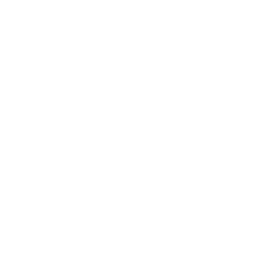 LMD Drone