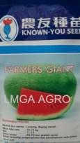 SEMANGKA FARMERS GIANT