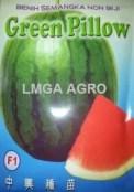 SEMANGKA GREEN PILLOW