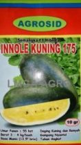 Innole Kuning 175 F1, Semangka Innole Kuning, Agrosid, Semangka Kuning, Terbaru, Jual, Harga Murah, LMGA AGRO