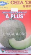 Jual Bibit Melon A Plus F1-Chia Tai Seed-Cap Kapal Terbang