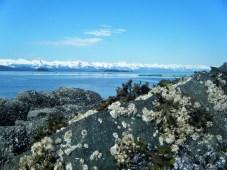 Chilkat Mountains from Amalga Harbor, Juneau, AK