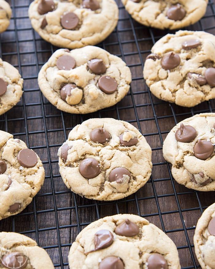 Peanut Butter Chocolate Chip Cookie Recipe
