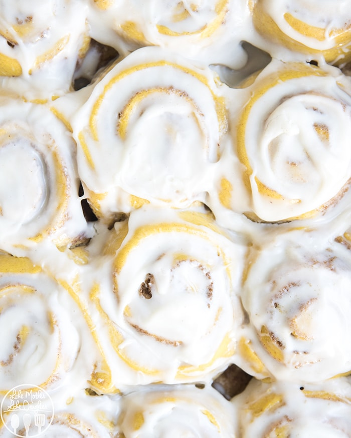 Pumpkin Sweet Rolls with Cream Cheese Frosting