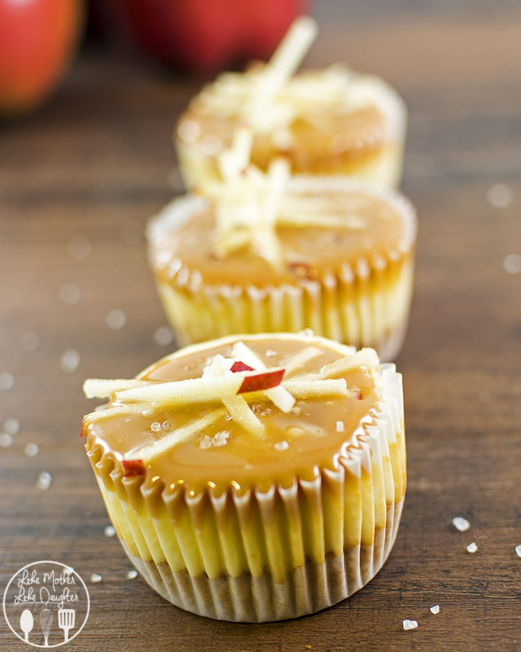 Salted Caramel Apple Mini Cheesecakes - These mini cheesecakes are the perfect dessert for sharing. Take them to your Thanksgiving dinner and they will be enjoyed by all!