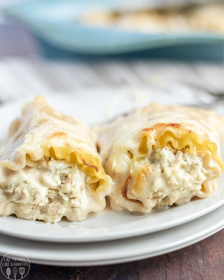 These chicken alfredo lasagna roll ups are perfect for a delicious dinner that is ready in less than 30 minutes! With a creamy ricotta and chicken filling, and topped with alfredo sauce and cheese! These roll ups are a dish everyone loves!