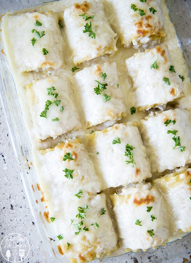 Chicken Alfredo Lasagna Roll Ups - These chicken alfredo lasagna roll ups are perfect for a delicious dinner that is ready in less than 30 minutes! With a creamy ricotta and chicken filling, and topped with alfredo sauce and cheese! These roll ups are a dish everyone loves!