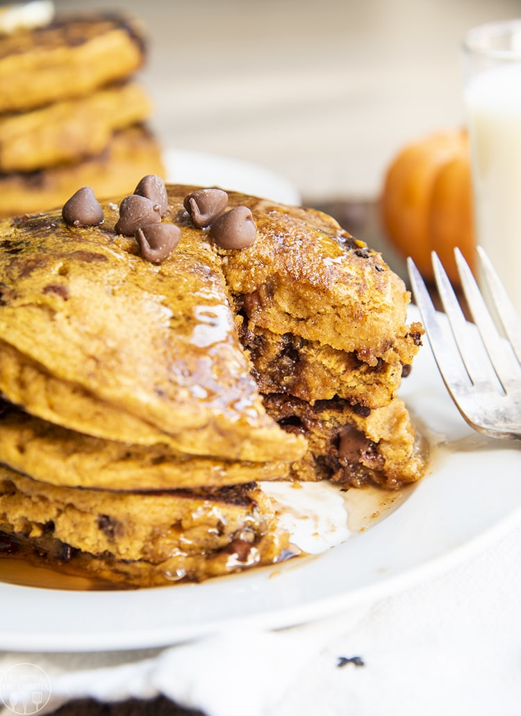 A plate of pumpkin chocolate chip pancakes are perfect for breakfast or brunch