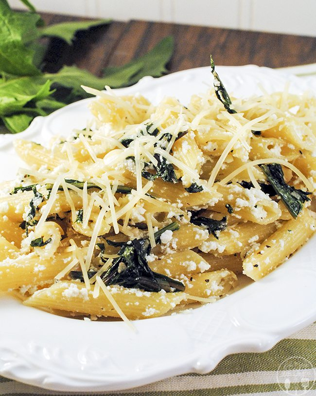 penne pasta with dandelion greens 3