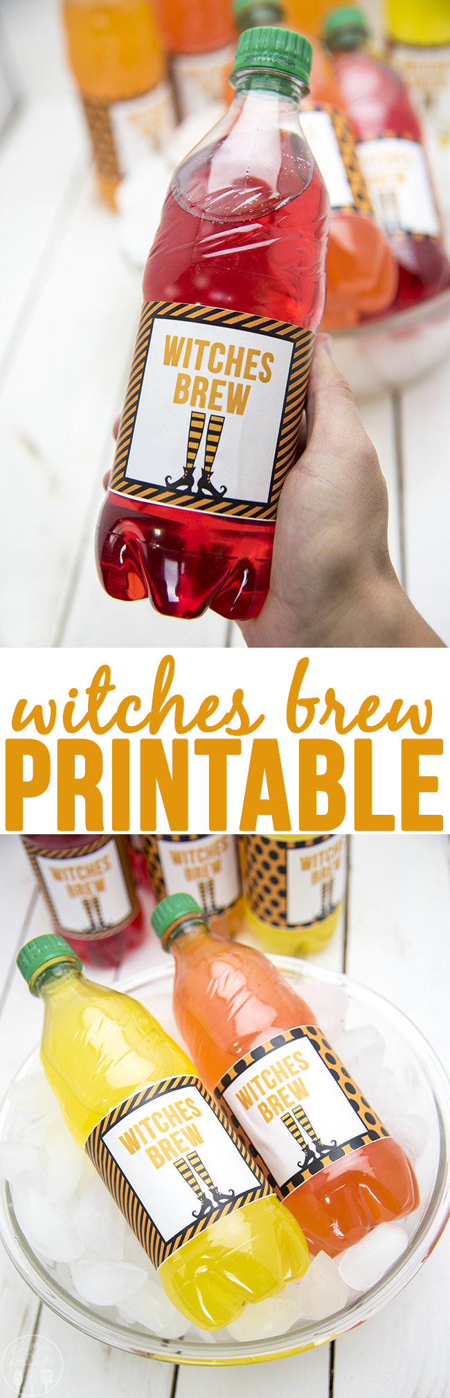 Witches Brew Printable - a cute printable to go around drink bottles, perfect for halloween!