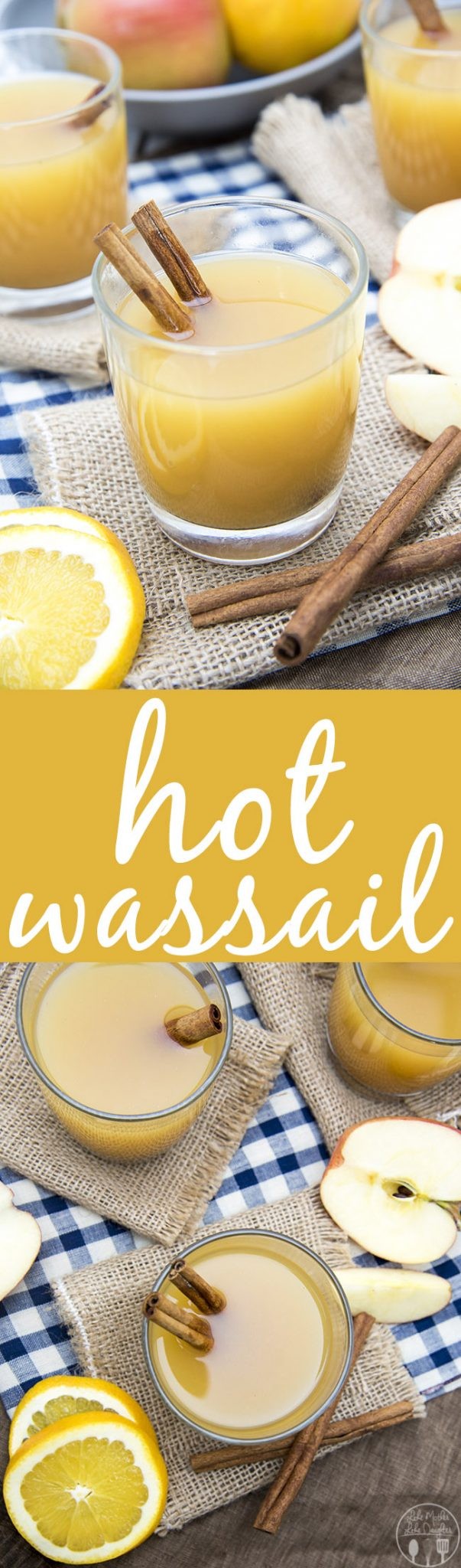 This Hot wassail recipe combines apple cider, pineapple juice and orange juice with a greatcinnamon undertone for a perfect holiday drink! It can be made on the stove or in a slow cooker!