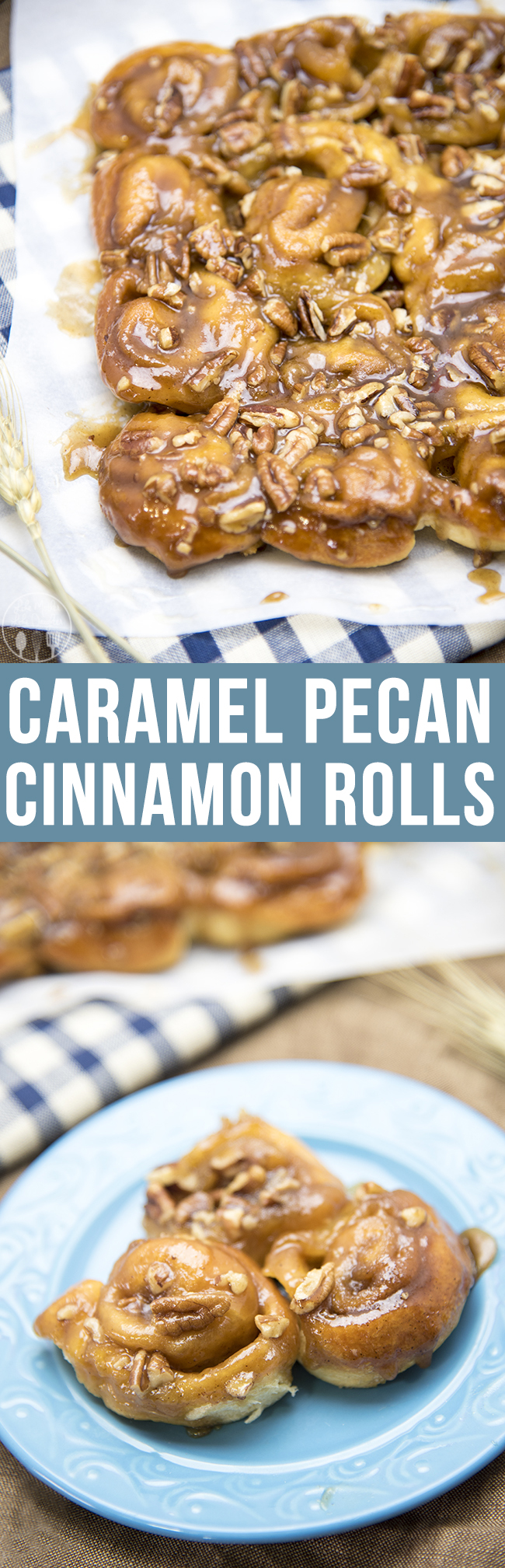 Mini Caramel Pecan Cinnamon Rolls - These delicious mini cinnamon rolls are topped with an ooey gooey caramel pecan topping. They're only 6 ingredients, so easy to make and perfect for breakfast or a dessert!