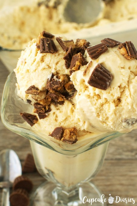 peanut-butter-cup-ice-cream-WM (1)