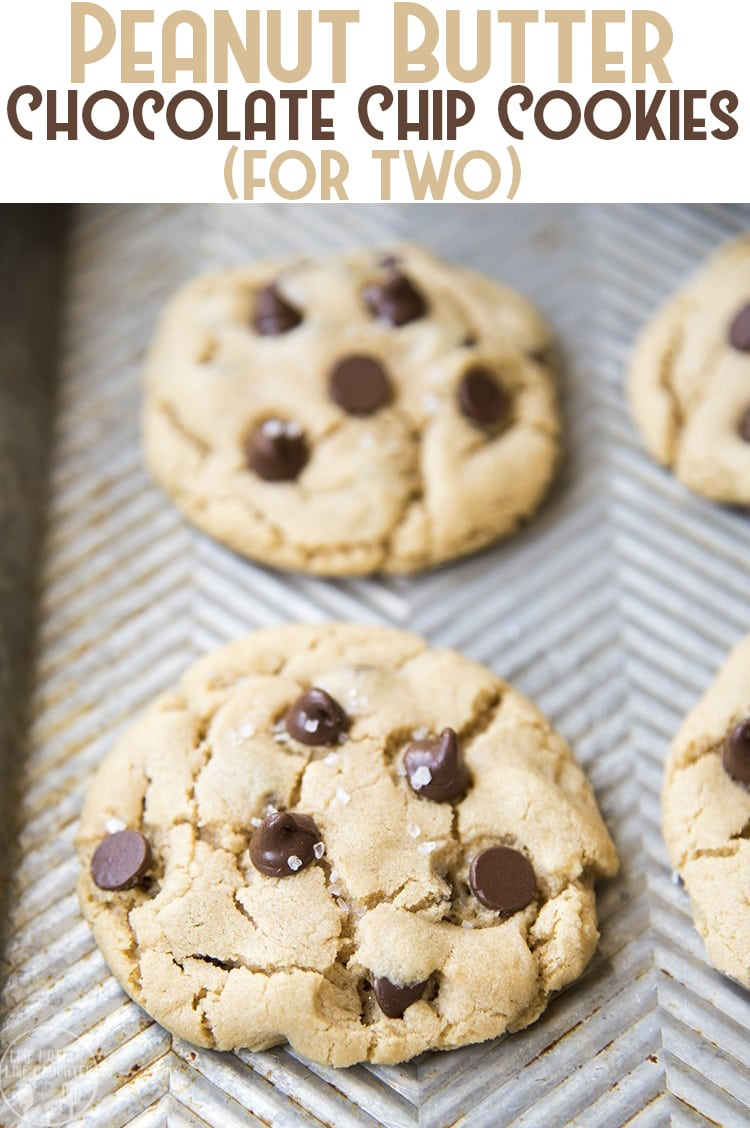 This peanut butter chocolate chip cookie recipe makes the perfect amount of cookies for 2 people, just 4 tasty peanut butter cookies stuffed full of chocolate chips in every bite. #peanutbutter #cookies #smallbatch #peanutbutterchocolate