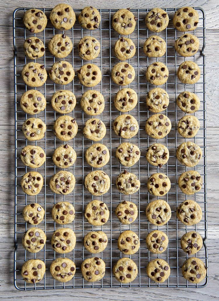 Miniature chocolate chip cookies on a metal cooling rack
