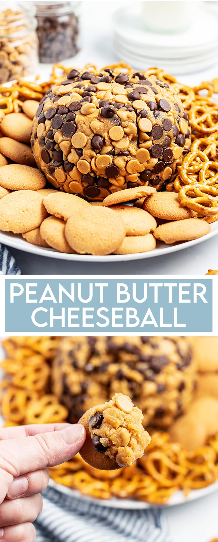 "A peanut butter cheese ball wrapped in chocolate chips and peanut butter chips on a plate with pretzels and cookies, there is a text overlay at the bottom that says ""Peanut Butter Cheeseball"", and underneath some of the cheeseball is on a nilla wafer cookie."