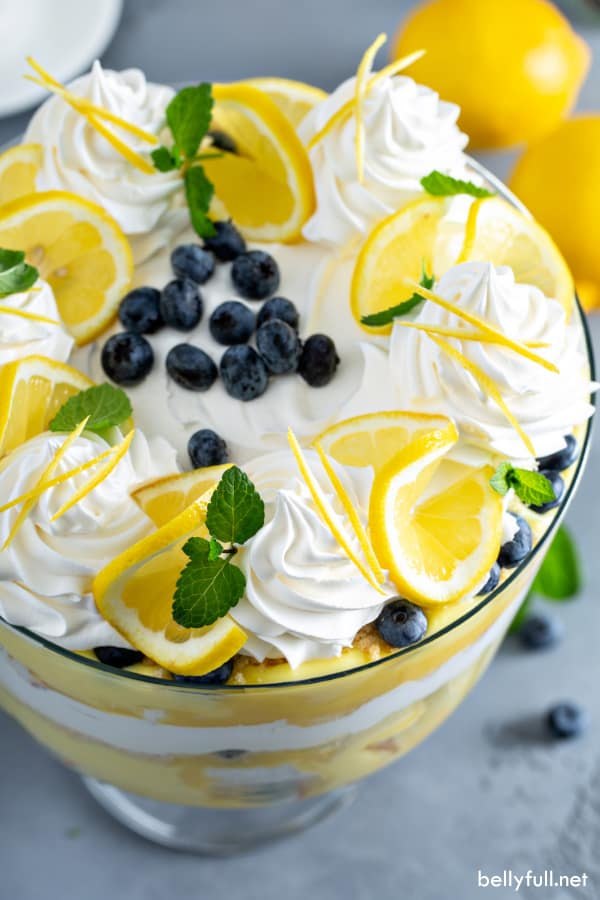 A top angle of a trifle dish stuffed full, and on the top there are swirls of whipped cream, lemon slices, mint leaves, and fresh blueberries in the middle.