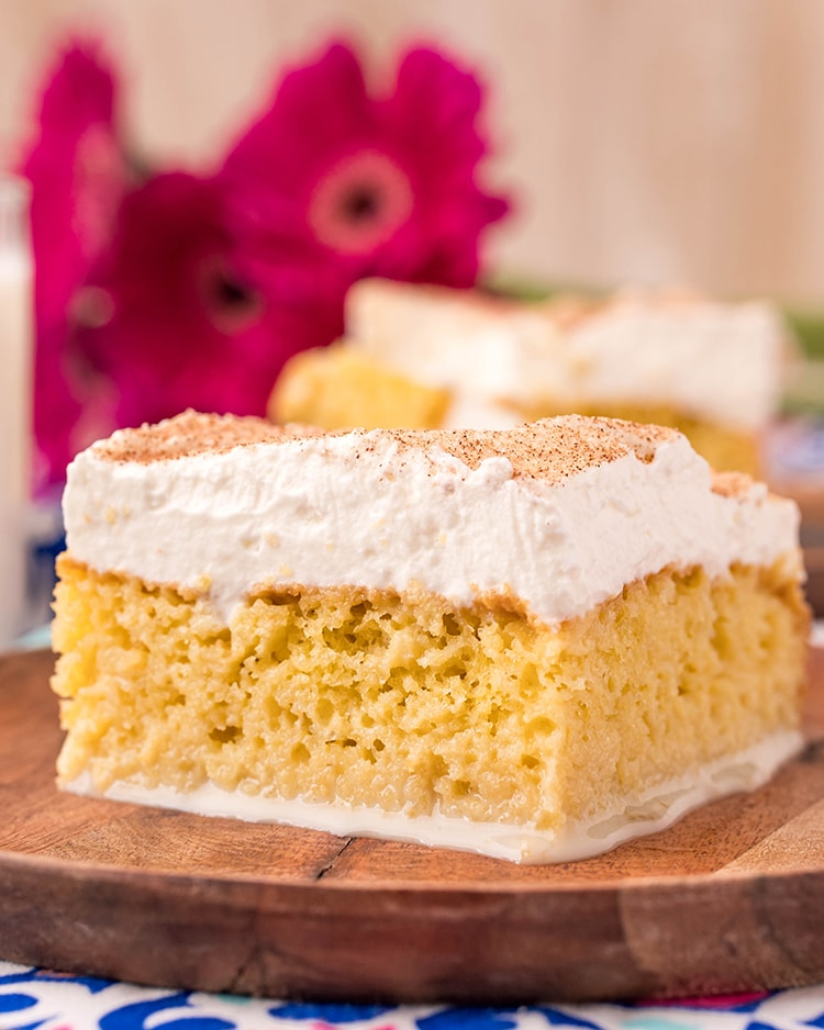 A side shot of a piece of tres leches cake, so you can see all the crumb of the cake, and the thick layer of whipped cream.