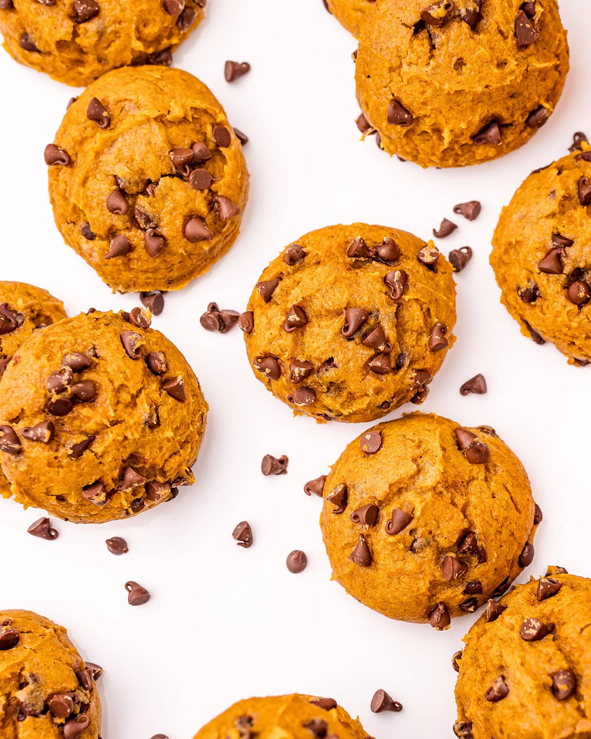 An overhead shot of pumpkin cake mix cookies, with chocolate chips in them.
