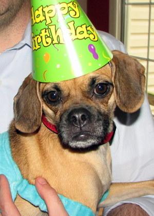 Celebrations Lmnop