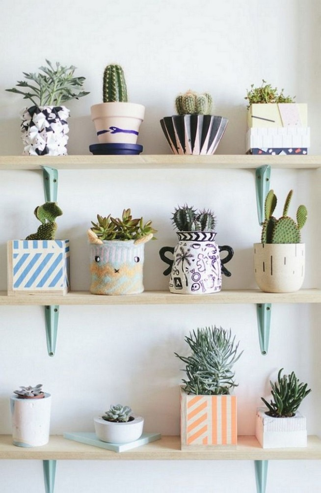 11 Lovely Small Cactus Ideas For Interior Decorations 32