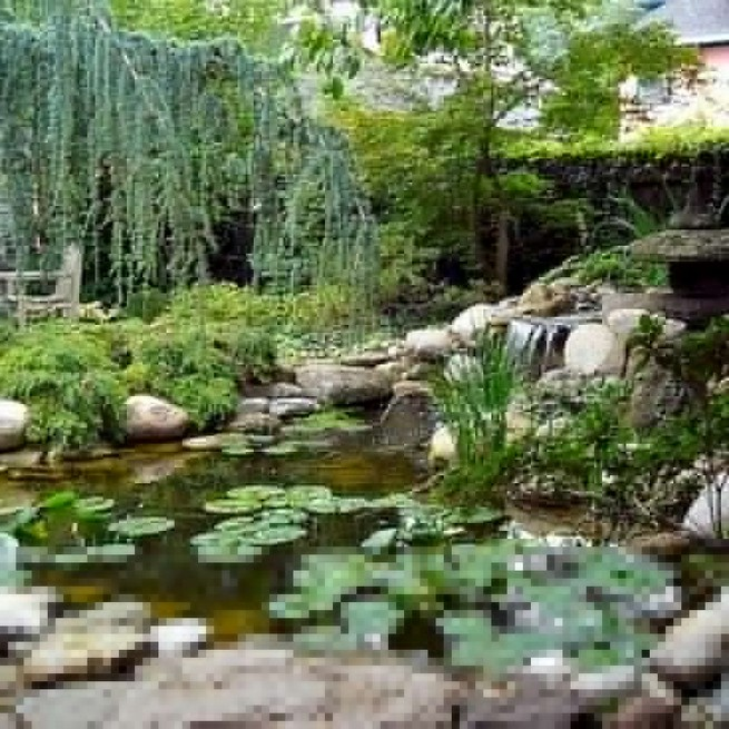 19 Gorgeous Backyard Ponds Water Garden Landscaping Ideas 33