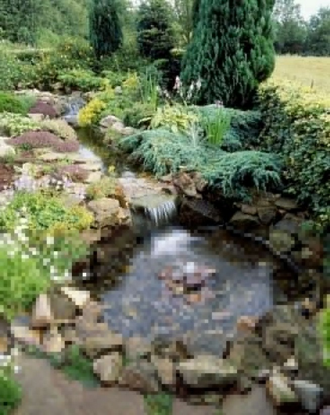 19 Gorgeous Backyard Ponds Water Garden Landscaping Ideas 37