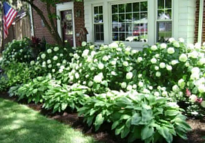 14 Relaxing Front House Landscaping Ideas 45