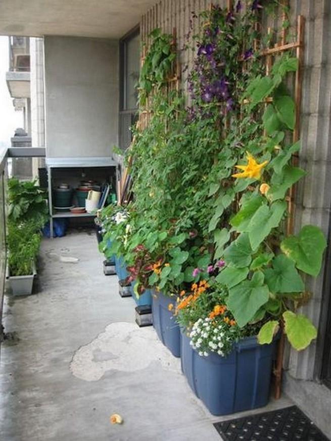 21 Best Container Vegetables Garden Inspirations Ideas 06