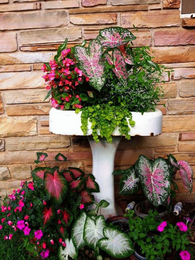 13 Brilliant Flower Pots Ideas For Your Garden 12