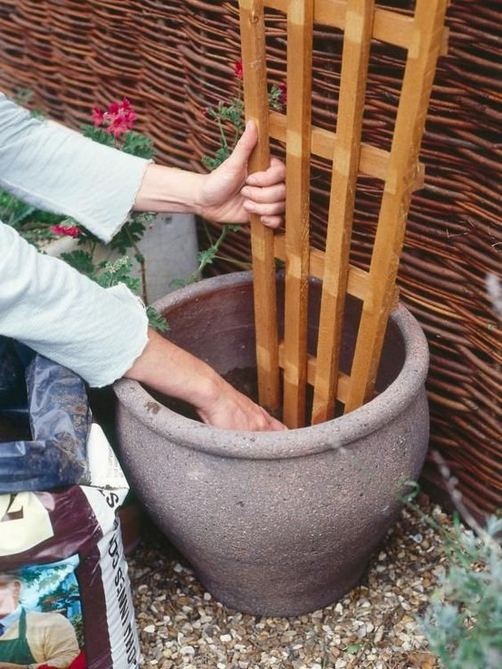 13 Brilliant Flower Pots Ideas For Your Garden 35