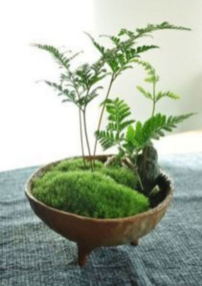 21 Creative DIY Indoor Garden Ideas 06