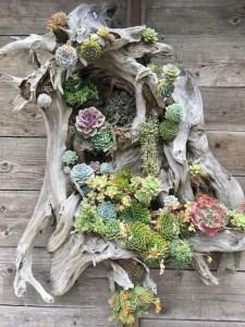 21 Creative DIY Indoor Garden Ideas 09