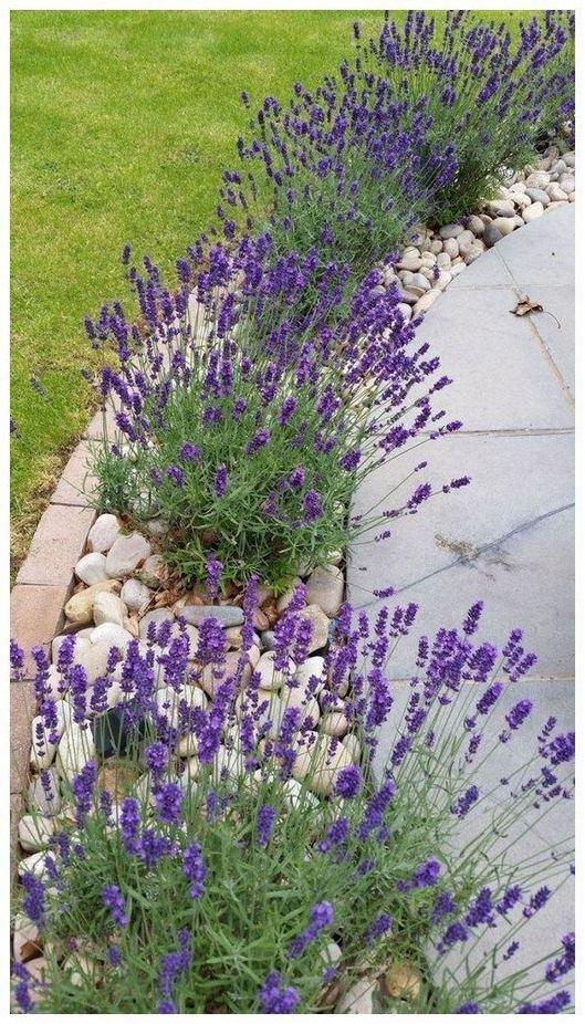 12 Best Ideas For Front Yard Rock Garden 19