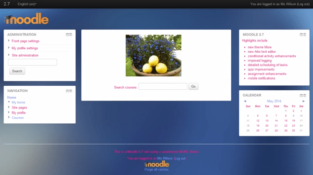 Example of More theme configured.