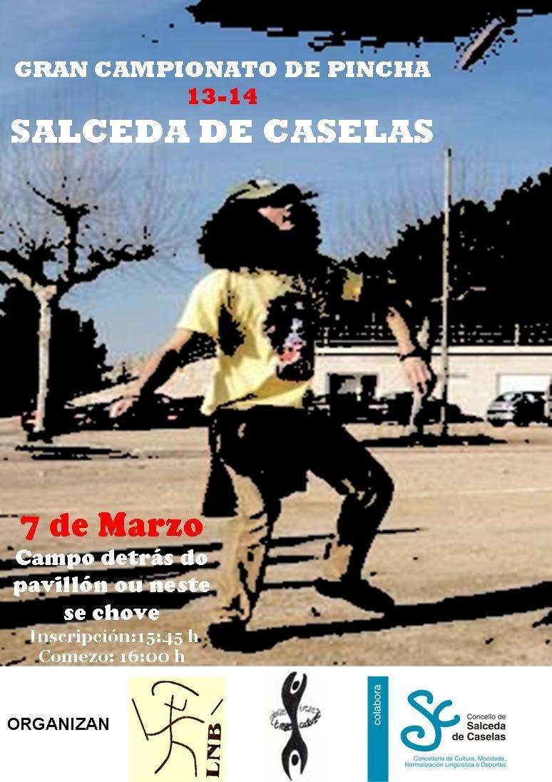 cartel20pincha1