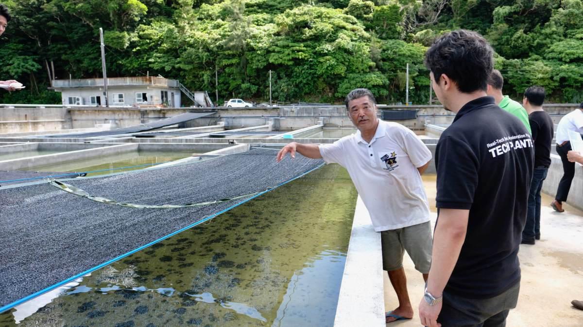 沖縄の一次生産現場を巡る第2回生産現場ツアー開催(12/15)本日より受付開始します