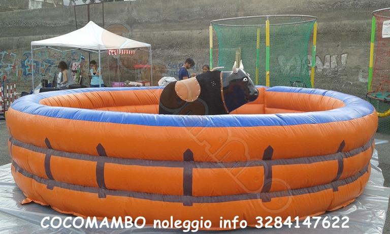 Noleggio toro meccanico rodeo Sicilia e Calabria