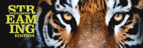 immagine rappresentativa di Sondrio Festival 2020 con tigre in primo piano
